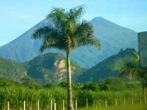 Active Volcano - On Bus during Guatemala Day Trip