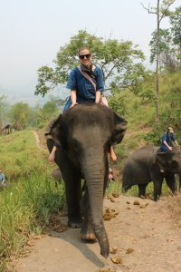 That's me, Gluten-Free Globetrotter, riding an elephant in Chiang Mai, Thailand!