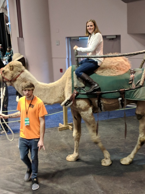 Gluten-Free Globetrotting on a camel at the travel show.